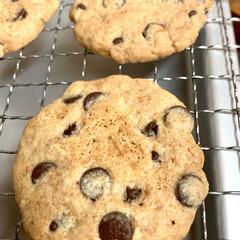 手作りクッキー 🍪good morning🍪  今日は、…(4枚目)