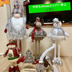 カインズ/Xmas人形/インテリア/クリスマスツリー/階段/ハンドメイド/... 我が家のクリスマスツリー🎄は、 3年目を…(4枚目)