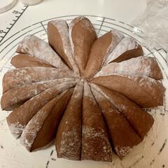 自家製天然酵母パン/おうちごはん/タッパー収納 明日まで待ちきれず😖💧💧💧 ココア生地で…