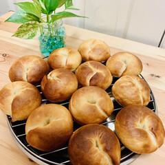ベーグル🥯/自家製天然酵母パン 🥯good morning🥯  久しぶり…(6枚目)
