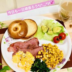 ワンプレート/結びベーグル/手作りパン/自家製天然酵母/朝食 おはようございます💕  今日も一日頑張ろ…(3枚目)