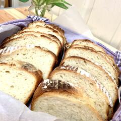 カンパーニュ/自家製天然酵母パン/商品紹介/商品レビュー/オススメ商品/辛口評価/... 余熱が冷めたので、カットしました🤗💓 端…(4枚目)