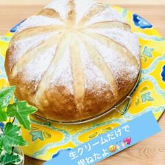 ブリエ/自家製天然酵母パン/手作りパン 生クリームだけ捏ねた贅沢なブリエパン💖 …(2枚目)