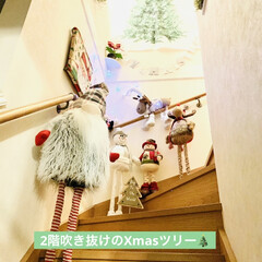 カインズ/Xmas人形/インテリア/クリスマスツリー/階段/ハンドメイド/... 我が家のクリスマスツリー🎄は、 3年目を…(2枚目)