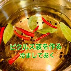 スタミナ丼/夏に向けて/スタミナご飯/スタミナ飯/スタミナ盛り 夕食が終わり、これからピクルス作りです🤗💓(3枚目)