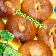 ベーグル/自家製天然酵母パン 🥯 good morningベーグル🥯 …