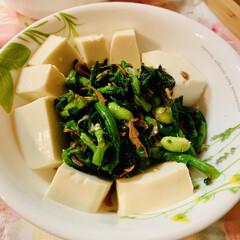 豆腐/菜の花/おうちごはん/うちの定番料理 今日も暑い一日😵💦でした。 菜の花とお豆…
