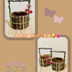 ¥100均/インテリア/丸木鉢カバー/雑貨/北欧/DIY/... 飾りリボン🎀をつけて💕 丸木鉢カバー完成…