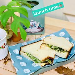 手作り/launch time/タマゴサンド/ヨーグルト種/カンパーニュ/自家製天然酵母パン 綺麗にカット出来ました〜🎵🎶🎵💕  la…