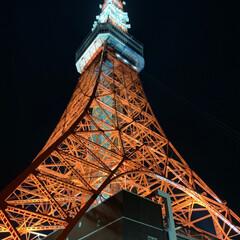 東京タワー パート2 夜の、東京タワー🗼