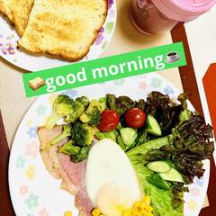 朝食/カンパーニュ/自家製天然酵母パン/ダイソー/セリア 🥪good morning☕️  今朝は…(1枚目)