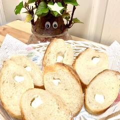 クリームチーズ/フランスパン🥖/自家製天然酵母パン/七夕インテリア/スタミナ丼/夏に向けて/... 焼き上がった途端にもう旦那様が立って待っ…(3枚目)