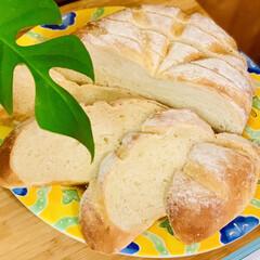 ブリエ/自家製天然酵母パン/手作りパン 自家製天然酵母パン💝ブリエ  カット🗡し…(2枚目)