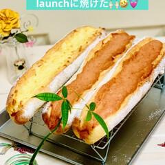 グルメ/launch/自家製天然酵母/手作りパン/フランスパン/ハンドメイド/... 自家製天然酵母 フランスパン🇫🇷🥖焼けま…(1枚目)