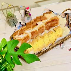 グルメ/launch/フランスパン/自家製天然酵母/手作りパン/ハンドメイド/... launchに焼きたてパン🥖が食べれるの…(3枚目)