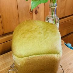 ほうれん草/自家製天然酵母パン/おうちごはん/うちの定番料理 ほうれん草パウダーを購入したので、 すぐ…