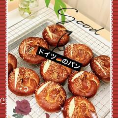 プレッツェル/自家製天然酵母パン ドイツ🇩🇪のパン 🥨プレッツェル🥨 焼き…