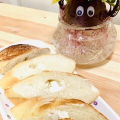 クリームチーズ/フランスパン🥖/自家製天然酵母パン/七夕インテリア/スタミナ丼/夏に向けて/... 焼き上がった途端にもう旦那様が立って待っ…(5枚目)