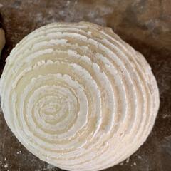 ブルーベリー/パン製作/カンパーニュ/自家製天然酵母/グルメ/暮らしを楽しむ/... まだ2日前にストウブ鍋で 焼いたカンパー…(2枚目)