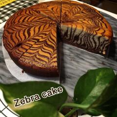 ゼブラ🦓ケーキ/手作りケーキ 我が家の定番中の定番ケーキ ゼブラ🦓ケー…(1枚目)