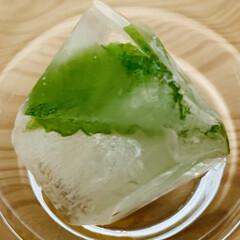 ミント/うちの定番料理 昨日の凍らせたミントを冷凍庫から出してみ…
