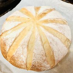 ブリエ/自家製天然酵母パン/手作りパン 生クリームだけ捏ねた贅沢なブリエパン💖 …(6枚目)