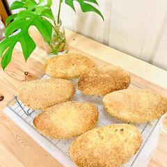 カレー🍛パン/自家製天然酵母パン 自家製天然酵母パン👯♀️カレーパン🎶 …