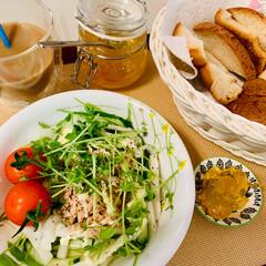 豆苗/シーチキン/サラダ🥗/ランチ/スタミナ丼/夏に向けて/... 🍞My lunch  🍽 私は、パンの端…