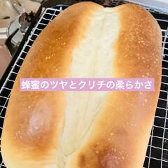 食パン🍞/蜂蜜🍯/クリームチーズ/自家製天然酵母/手作りパン/ライフスタイル/... 自家製天然酵母パン  蜂蜜🍯とクリームチ…(5枚目)
