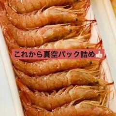 フードセーバー/グルメ/お正月食品/コストコ/海鮮/真空パック/... 昨日は、 コストコにお正月食品を買いに行…
