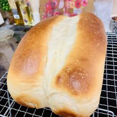 食パン🍞/蜂蜜🍯/クリームチーズ/自家製天然酵母/手作りパン/ライフスタイル/... 自家製天然酵母パン  蜂蜜🍯とクリームチ…(7枚目)