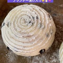 ブルーベリー/パン製作/カンパーニュ/自家製天然酵母/グルメ/暮らしを楽しむ/... まだ2日前にストウブ鍋で 焼いたカンパー…(3枚目)