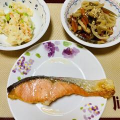 ポテトサラダ/蓮根きんぴら/シャケ/グルメ/夕食 夕食出来ました〜☆〜(ゝ。∂)💖