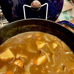 ストウブ鍋/おうちごはん/うちの定番料理 今夜は、大好きなストウブ鍋でビーフカレー…