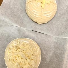 チーズ/カンパーニュ/自家製天然酵母パン/手作りパン/ハンドメイド/手作り/... たった今焼けました〜٩(^‿^)۶🥖🥐🍞…(5枚目)