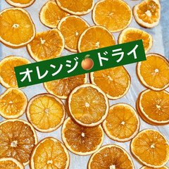 ゴールドキウイ/ドライフルーツ/オレンジ🍊 フルーツドライを作ったよ🤗💖 オレンジ🍊…