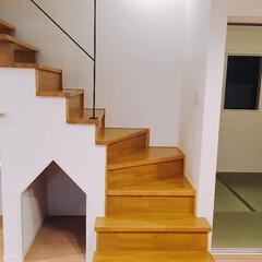 ペットのおうち/階段/階段下/有効利用/わんこのおうち/かわいい/... 階段下のかわいいおうち。 デッドスペース…