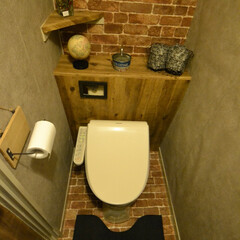 タンクレストイレ/DIY プラダンを使ってタンクレストイレをつくっ…