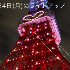 フォロー大歓迎/クリスマスツリー/旅行/風景 東京タワー🗼 60歳還暦祝い👍✨✨✨(3枚目)