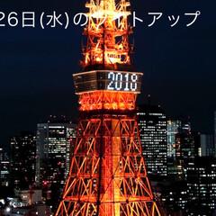 フォロー大歓迎/クリスマスツリー/旅行/風景 東京タワー🗼 60歳還暦祝い👍✨✨✨(5枚目)