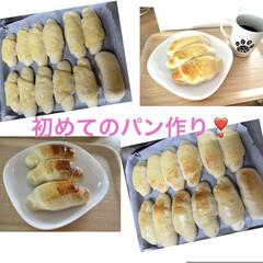 ニャンコ同好会/コンベクションオーブントースター/初めてのパン作り/ニトリ こんにちは😃  6月6日に、初めてのパン…(2枚目)