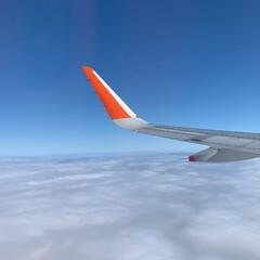 飛行機✈️ 今日は、名古屋へ❣️ 機内でジェットスタ…