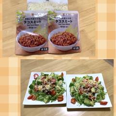 ニトリのお皿/タコライス/タコスミート/セブンイレブン/にゃんこ同好会/猫大好き❤ こんばんは🌇  🍵nagomi🌱さんのお…