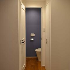 戸建てリノベーション/トイレ トイレにもアクセントカラーのブルーを差し…