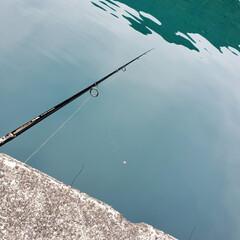 LIMIAおでかけ部/フォロー大歓迎 #パワーチャージ #赤カマス釣り 休日の…