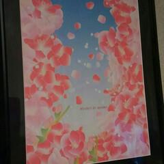 雪/桜/イラスト/絵/フォロー大歓迎/冬/... 今年のword 絵新作です😌💓「雪は桜」…