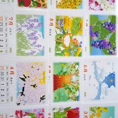 インテリア/癒し/絵/イラスト/カレンダー/ハンドメイド/... 2020年のカレンダー作りました。絵は、…