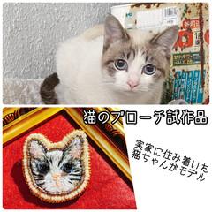 刺繍ブローチ/猫グッズ/ハンドメイド/猫/ビーズ刺繍/刺繍/... 最近ハマってる動物刺繍! 実家に住み着い…(3枚目)