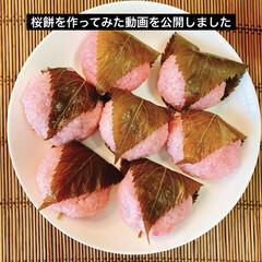 和菓子/お家カフェ/桜餅/手作り/おやつ/YouTuber/... 桜餅を作ってみた動画をYouTubeに公…