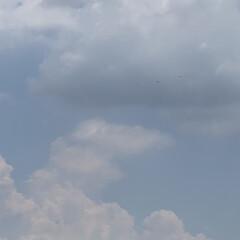 「埼玉に居る娘から ブルーインパルスの動画…」(3枚目)